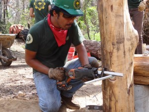 American YouthWorks Corpsmember Helps Reconstruct Bridge in Bastrop State Park