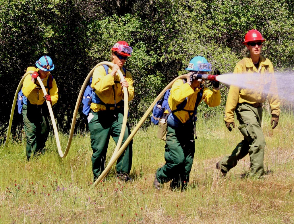 how to become a wildland firefighter in california